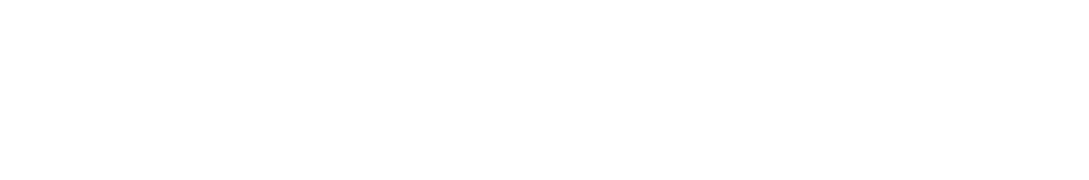 MOTOTRBO Nitro